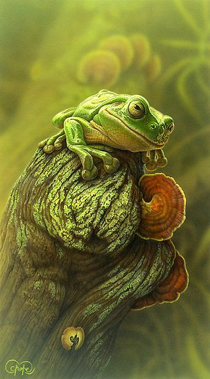Green Frog 2o1o by Christopher Pope - acrylic painting