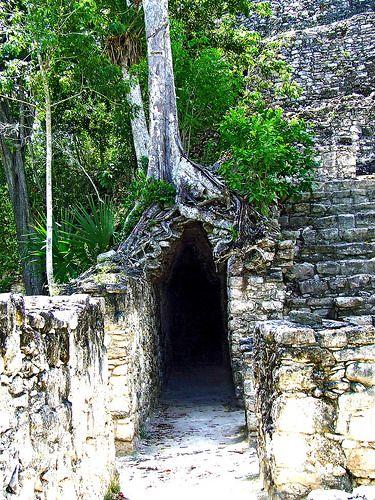 Mayan ruins , Coba, Mexico
