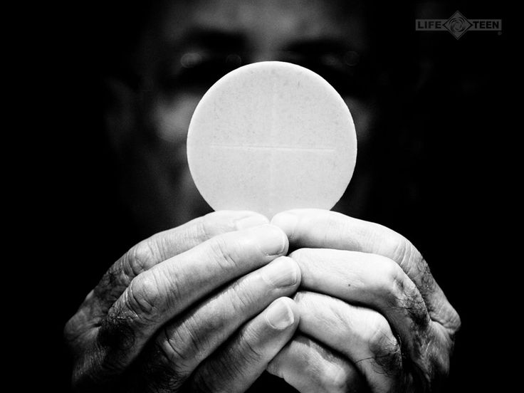 My God, I believe, I adore, I trust and I love You! I beg pardon for all those that do not believe, do not adore, do not trust and do not love You. Amen. (from the angel at Fatima)