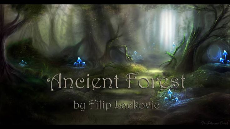 Celtic Music - Ancient Forest