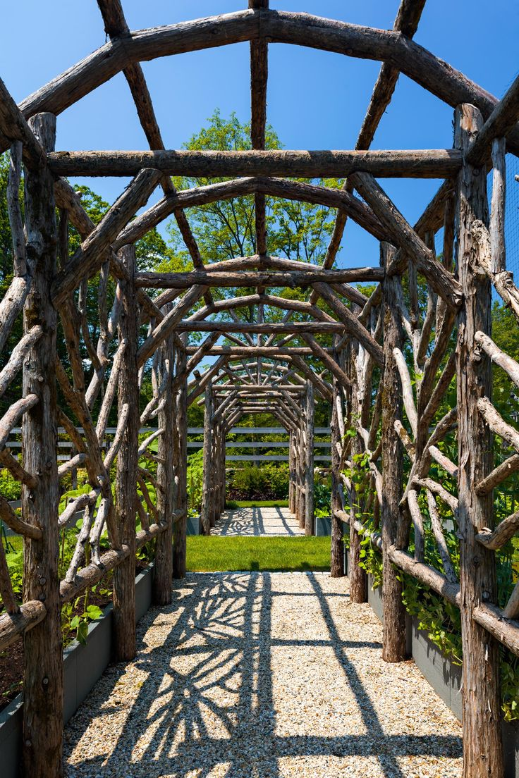 Garden Arbor: A Rustic Cedar Arbor Is Host To A Number Of Climbing  Vegetable Vines