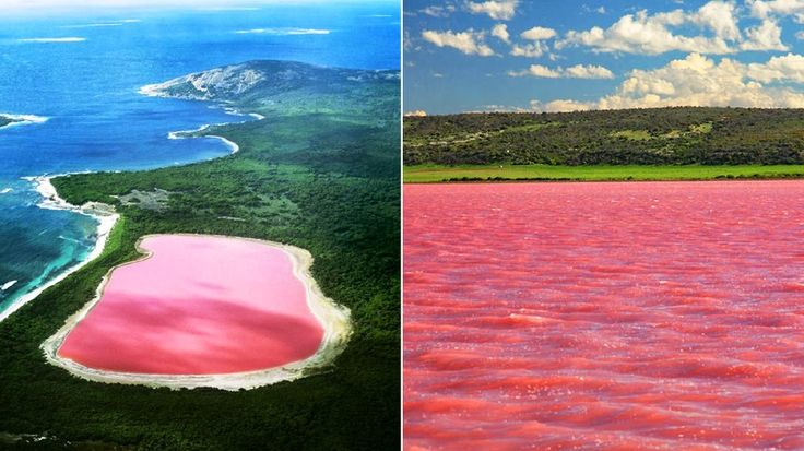 Pink Lake, Australia This isn't a bunch of melted bubble gum. This is actually one of many salt lakes located in Western Australia. It gets its pink hue from the beta carotene of alga in the water.