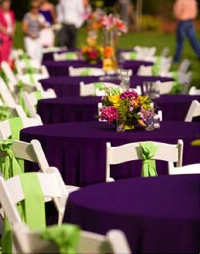 13 best purple and green wedding images on pinterest gentleman purple with lime green tables i have fallen in love with this purple color junglespirit