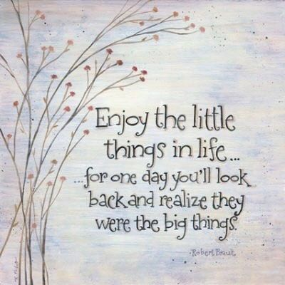 Enjoy the little things in life... for one day you'll look back and realise they were the big things. Robert Brault