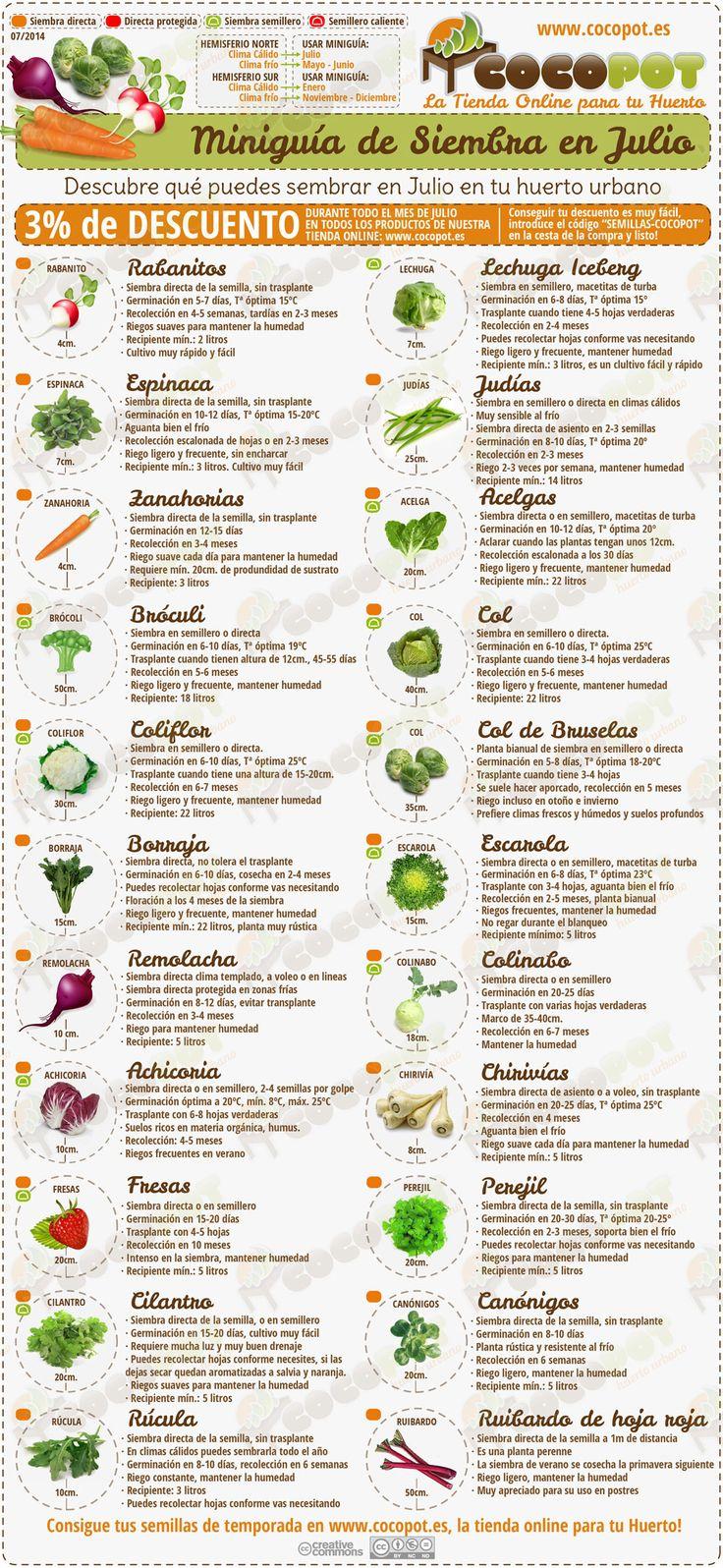 Actualizada la Miniguía de Siembra en julio para tu #huertourbano con más variedades de #semillas y un descuento para este mes en nuestra tienda online, no te la pierdas!