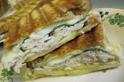 I am definitely going to 'melt into bliss' as they promise.....totally making this for dinner TONIGHT (my panini machine is my new bestie)  ~ CARAMEL/APPLE TURKEY PANINI.