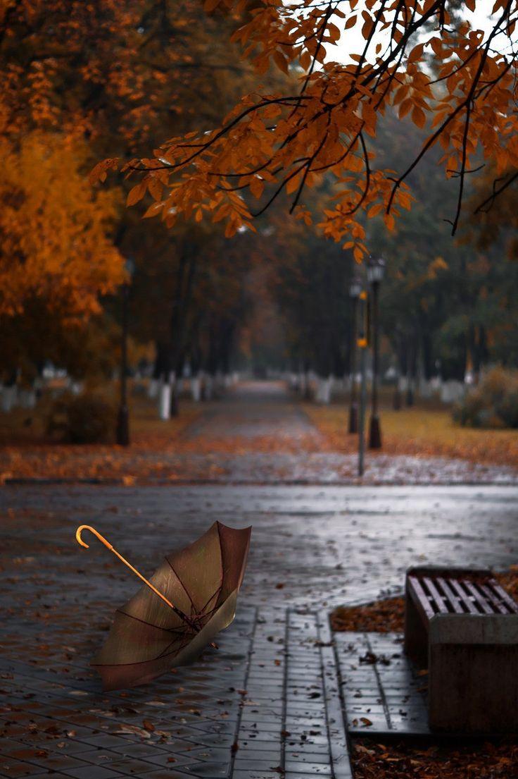 Осень дождь анимация картинки