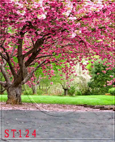 OUTDOOR SPRING cherry blosso 5x7 FT CP PHOTO SCENIC BACKGROUND BACKDROP MA-ST124 #HUAYI #Scenic We can design a unique backdrop for you.