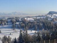 Métabief: depuis le Morond vue sur le Mont Blanc et le Mont d'Or