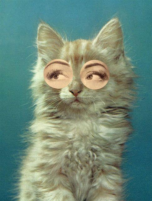 Mathilde Aubier and Christine DelaquaizeCat Eye, Cat Women, Bright Eye, Self Portraits, Collage Art, Cateye, Design Studios, Silly Cat, Eye Makeup Tutorials