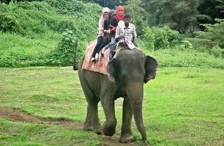 Kebun Binatang Medan (Medan Zoo)