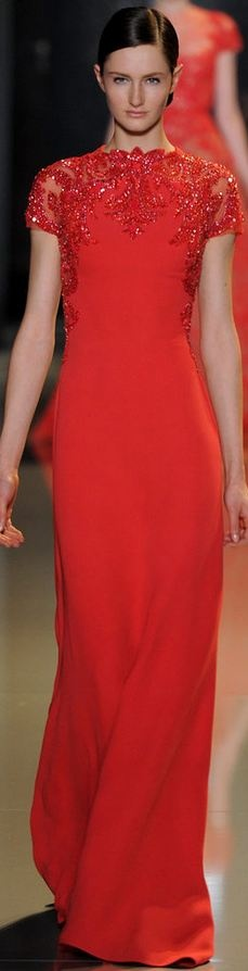 Elie Saab - Haute Couture Spring 2013  Beautiful stoning. (Wish I could see the back... Why do pics only ever show the front?)