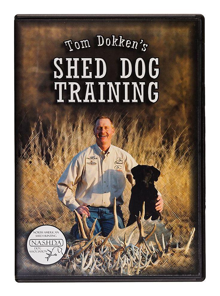 Dokken S Shed Dog Shed Dog Training Video Dvd Dog Training