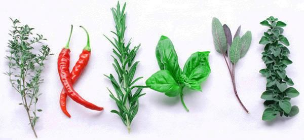 Keep your skin healthy this July 4th by seasoning grilled foods with antioxidant herbs and spices like rosemary