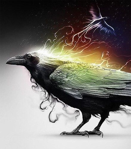 """In Celtic Mythology a Raven is a Sign of Change to Come"" ~♪"