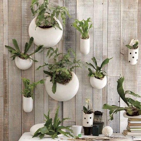 Shane Powers Ceramic Wall Planters