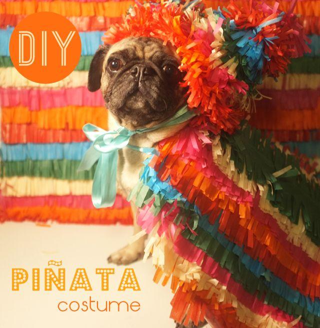 Dog Pinata (Pug)