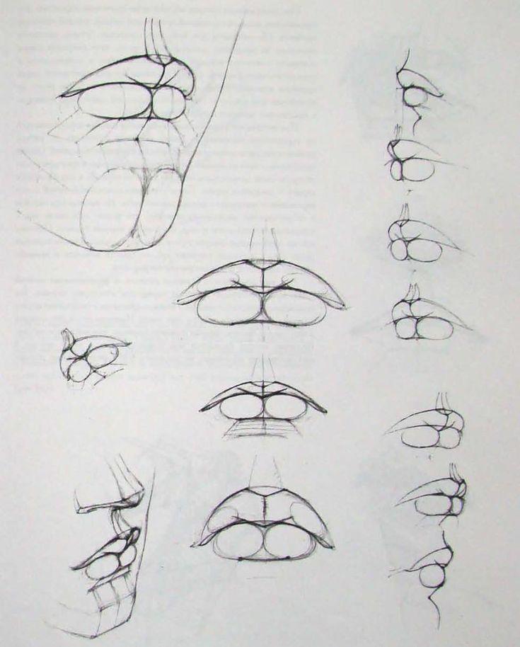 академическое рисование глаз человека - Поиск в Google