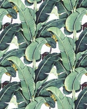 Behang met jungleprint Cole&Son this would look good in a study