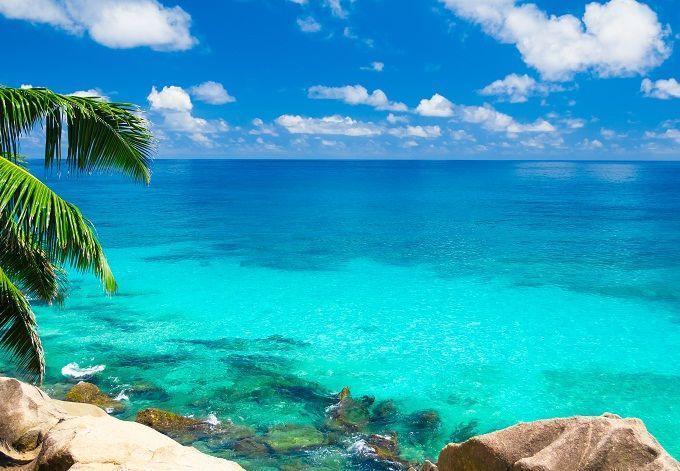 BAHAMAS  C'è da fidarsi se vi diciamo che siamo in uno dei posti più belli al mondo. Appena sopra Cuba, a pochi km da Miami, nel bel mezzo dell'Oceano Atlantico, lasciatevi conquistare da spiagge a sabbia rosa, acque trasparenti con fondali incredibili e resort da sogno: le Bahamas offrono alla vista paradisi che si fa fatica a descrivere, con un flora e una fauna che mostrano una ricchezza da manuale. Qui potrete ammirare specie rare, come l'iguana delle Bahamas e i fenicotteri rosa, o…