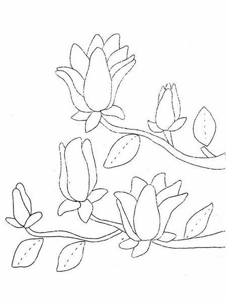 [转载]韩国花枝——手描图
