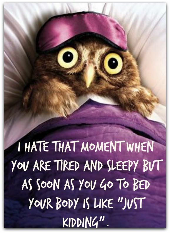 Insomnia Quotes Funny