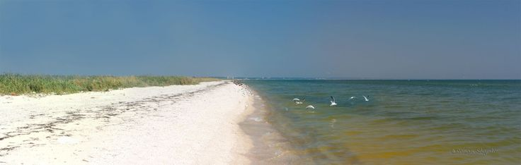 Obitochna spit at Azov sea (panorama)