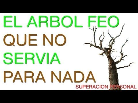 Superacion Personal y Autoestima - Motivacion en Español - YouTube