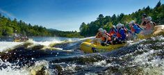 Maine Whitewater River Rafting on the Penobscot River with North Country Rivers
