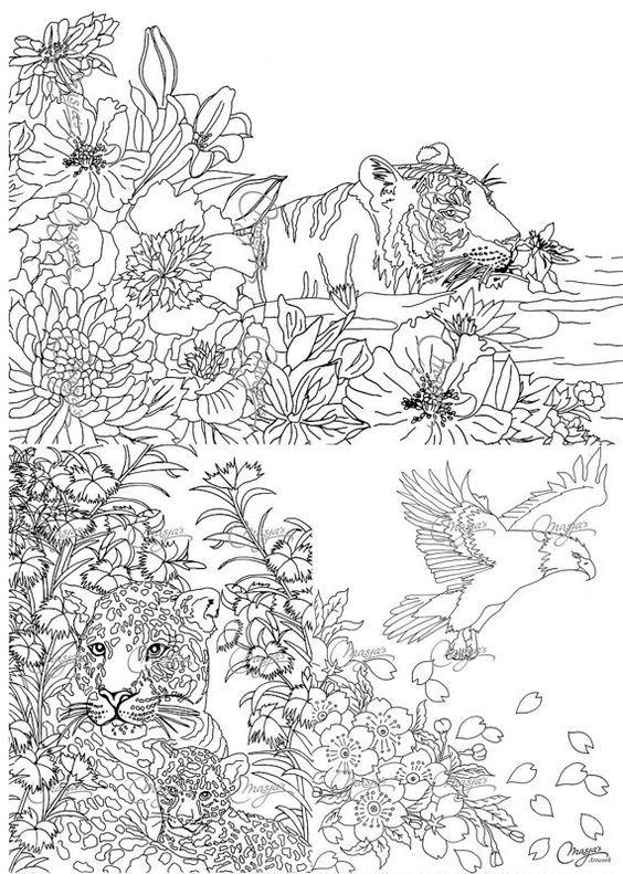 Connu Les 341 meilleures images du tableau coloring animals divers sur  UN15