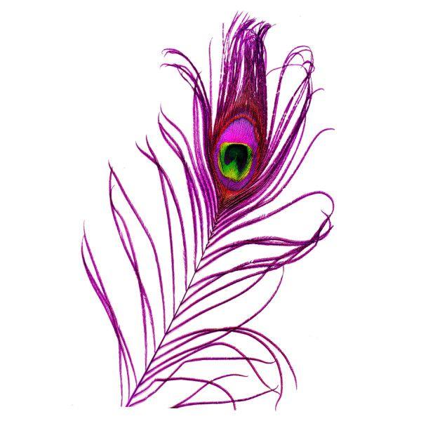 purple peacock feather -Sarah | The Color Purple | Pinterest