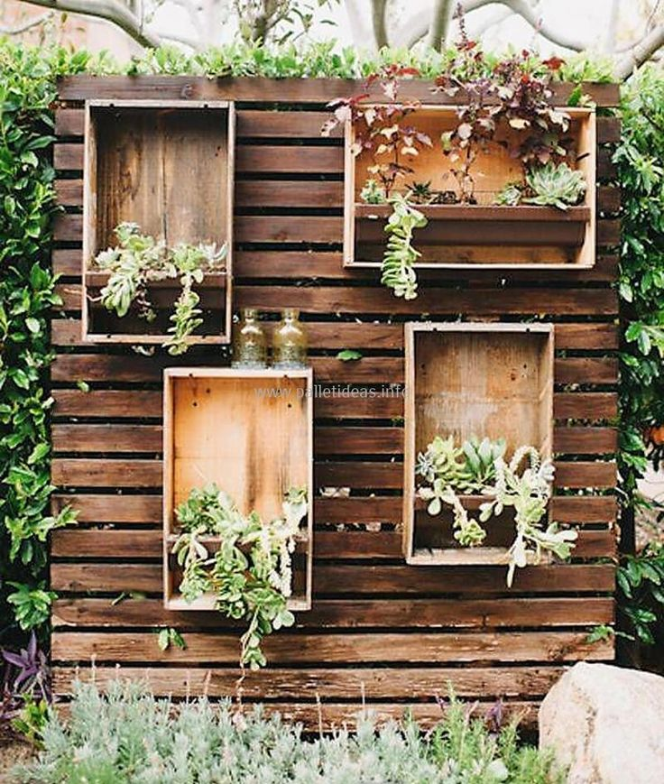 wood pallet planter wall