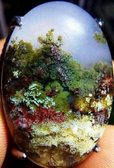 Best 25 Agates Ideas On Pinterest Geode Rocks