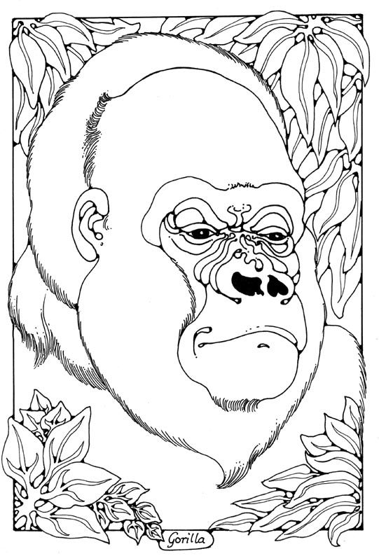 gorilla colouring page by Dandi