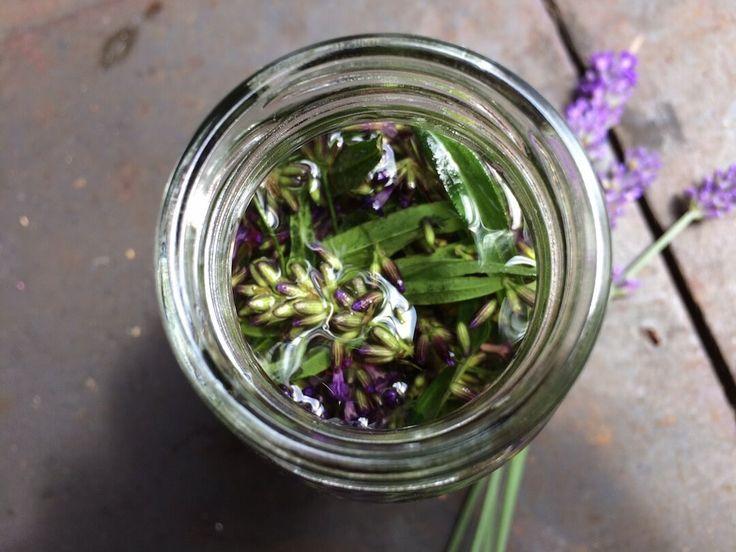 Lavendel ist im Sommer finde ich, kaum wegzudenken. Er blüht unglaublich schön und verströmt einen angenehmen Duft. Lavendel kann vielseitig verwendet werden, Ihr findet es in Parfum, ätherischen Ölen, Duftkissen, Massageöl, Shampoos, Cremes, Tee, Insektenabwehr und und und… Ich zeige Euch heute, wie Ihr ganz einfach ein Lavendelöl (zur äußerlichen Anwendung) herstellen könnt. Es ist kein reines Lavendelöl (das kann nur durch andere aufwendige Verfahrenhergestellt werden) aber ein…