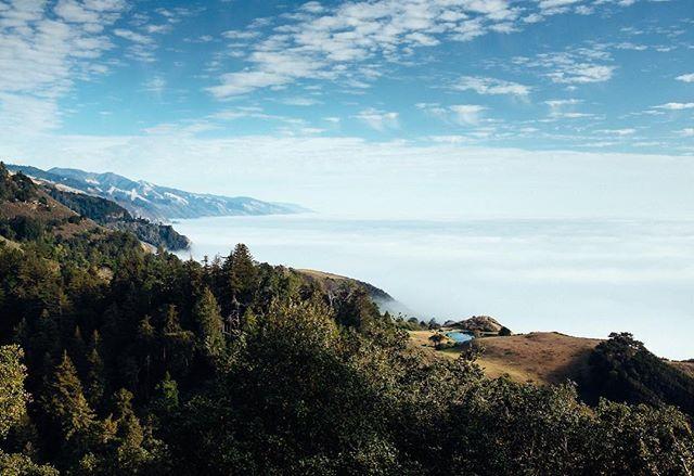 Above the clouds| Big Sur, CA | October 2016 . . . #california #bigsur #x100s #vsco #vscocam #myfujifilm #fujifilmusa #fujifeed  #landscape #rei1440project #optoutside #nature #fog #calocals - posted by Chris Fowler https://www.instagram.com/chrisxfowler - See more of Big Sur, CA at http://bigsurlocals.com