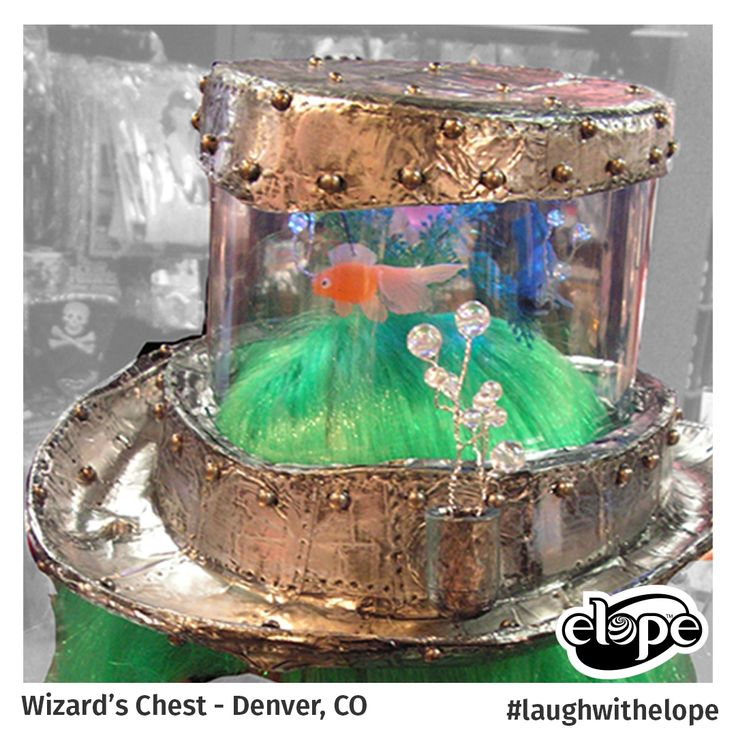 """""""Hydrocephalus"""" by Victoria Salvador The Wizard's Chest - Denver, CO  Vote for this hat: http://woobox.com/27q2tb"""