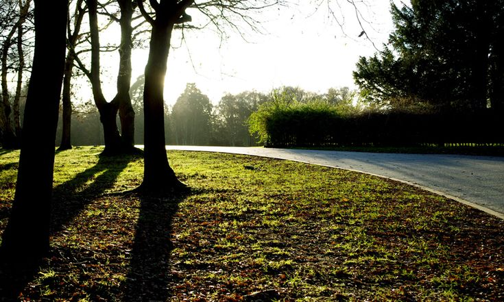 Park settings in both prelude and metaphor feature in today's Poet's Corner contributions from writer JR McRae.