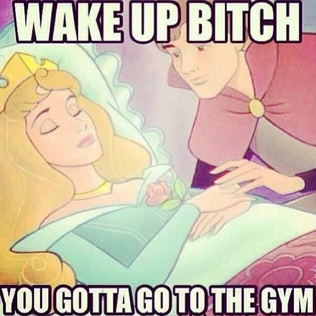 Wake up bitch, you gotta go to the gym