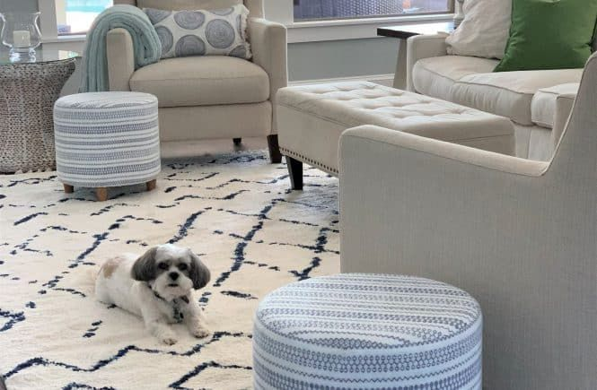 12 Best Navy and White Area Rugs: Under $200
