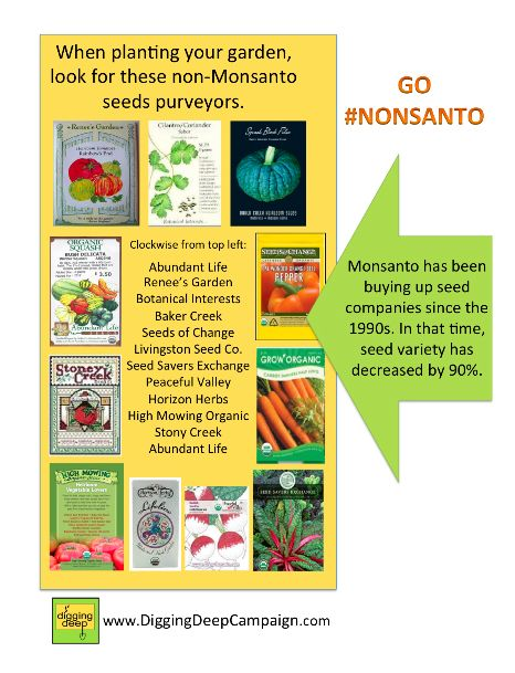Go Nonsanto! Seed Companies not owned by Monsanto: Green Thumb, Non Gmo, Food, Seed Companies, Outdoor, Gardening, Seeds, Non Monsanto Seed, Gmo Seed
