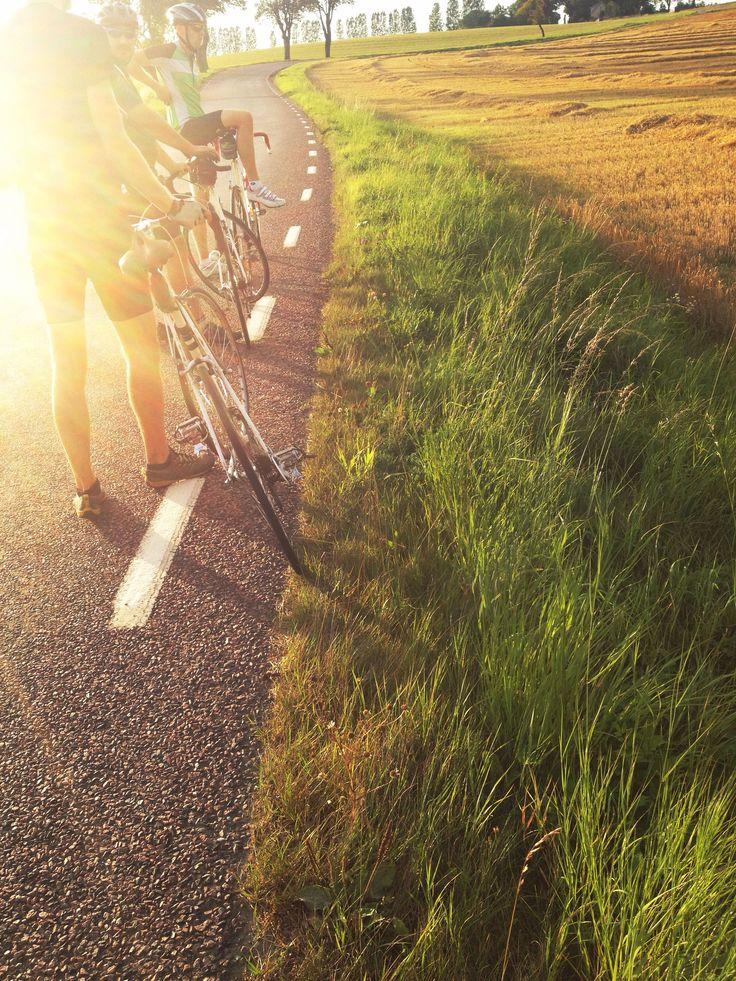 Go for a bike ride in the beautiful region of Skåne.