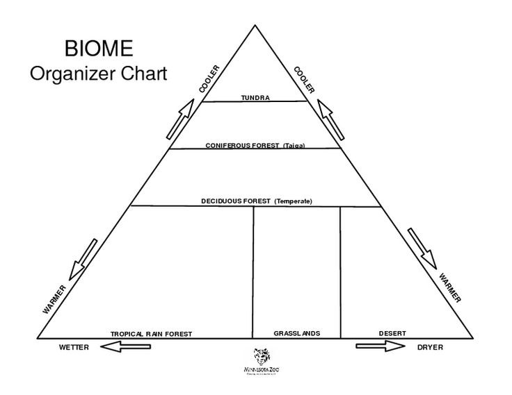 Biome Organizer Chart Worksheet Lesson Planet Life