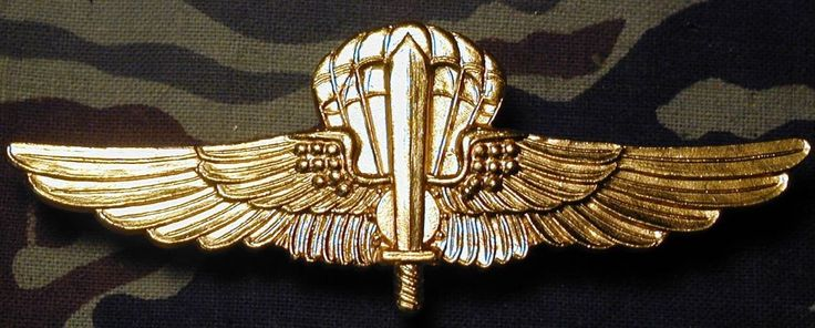 Italy Italian Para Saboteur Parachute Jump Badge gold metal wings B&T 1796