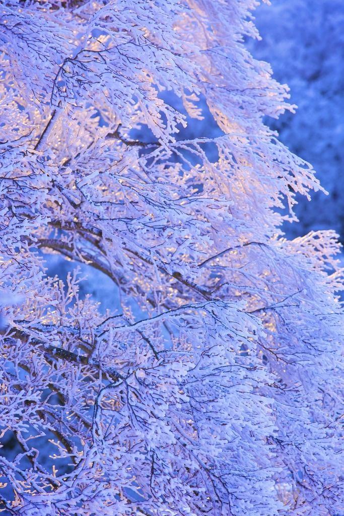 The winter blues.