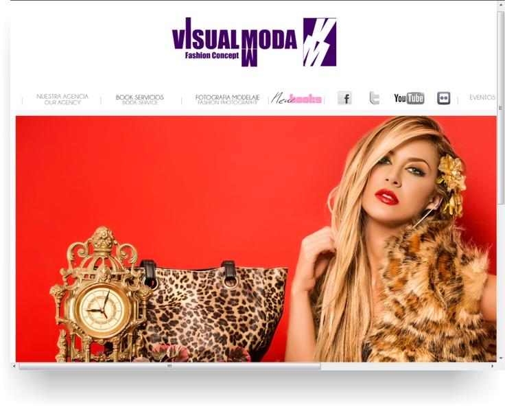 Diseño web  por : Gio Otavo  Agencia: Visual Moda Creativos  www.visualmodacreativos.com