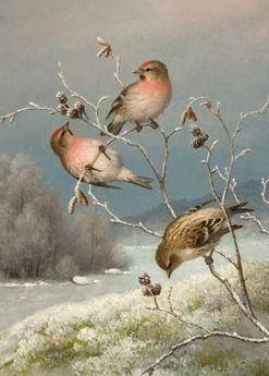 """""""Urpiaisia""""  Ferdinand von Wright - Ferninandilla oli ainoana veljeksistä takanaan - tosin kesken jääneet - opinnot Tukholman taideakatemiasta. Suomessa hän ryhtyi johdonmukaisesti luomaan uraa kuvataiteilijana keskittyen vuodesta 1845 lähtien öljymaalaukseen."""