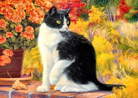 Looking Afar - Cat F - beautiful, pets, cats, artwork, painting, art, animal, wide screen, flowers, feline, vase