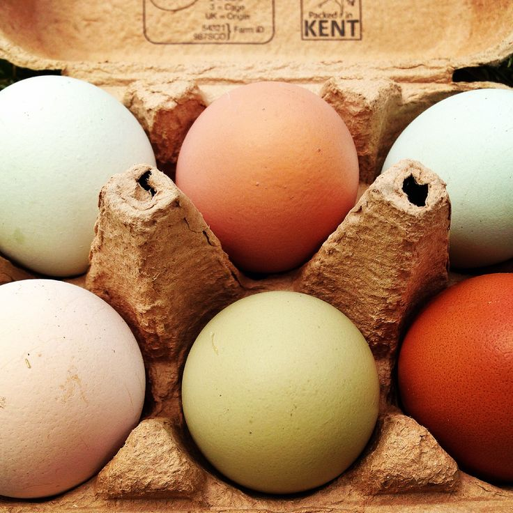 Local eggs from local chickens, so pretty they look almost too good to eat, but I'm gonna!