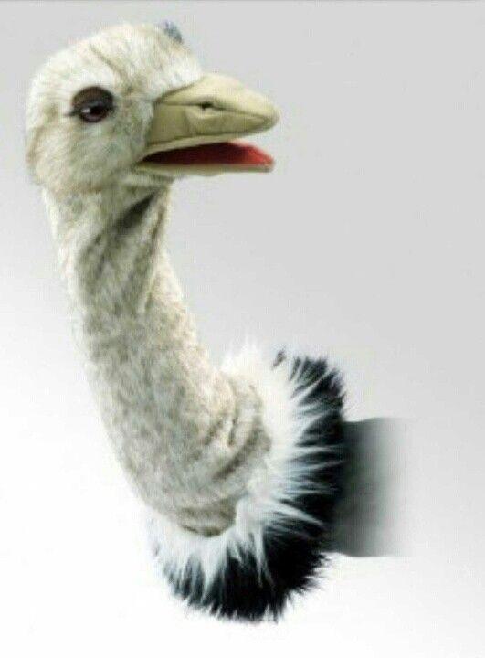 Struisvogel hand pop. Ostrich puppet. Strauß Puppe.